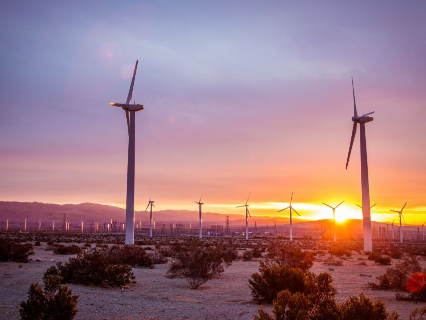 Palm Springs Windmill Tours