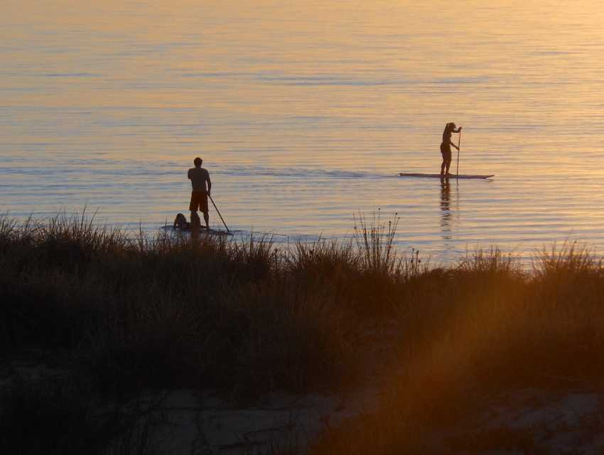 Sunrise Paddleboards